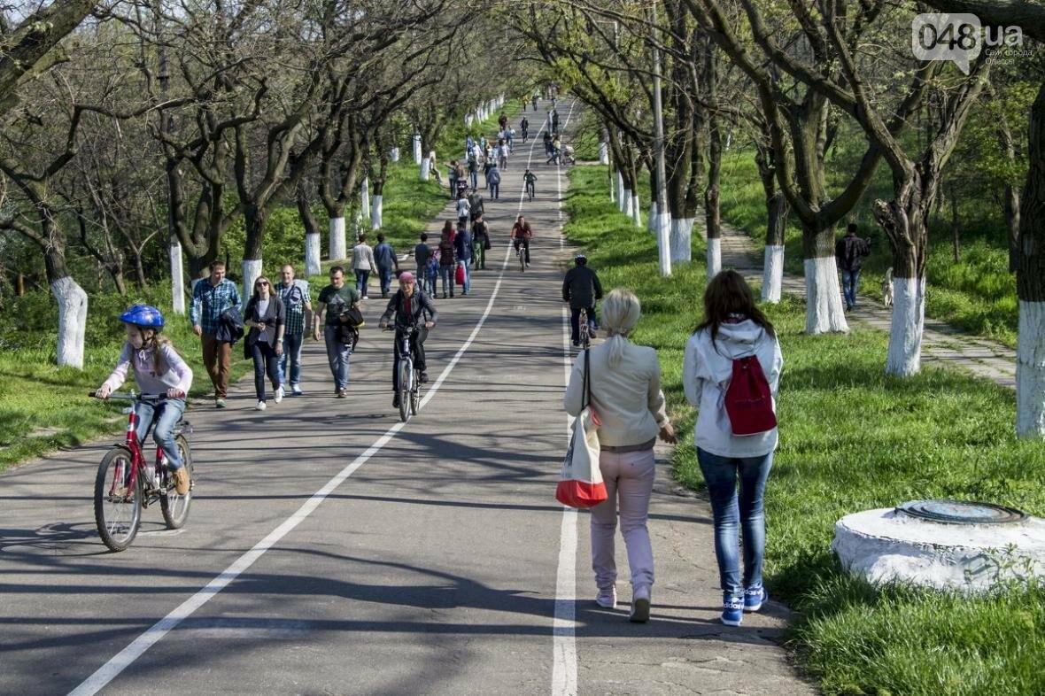 Как провести конец лета? Спасаем август в Одессе (ФОТО), фото-6