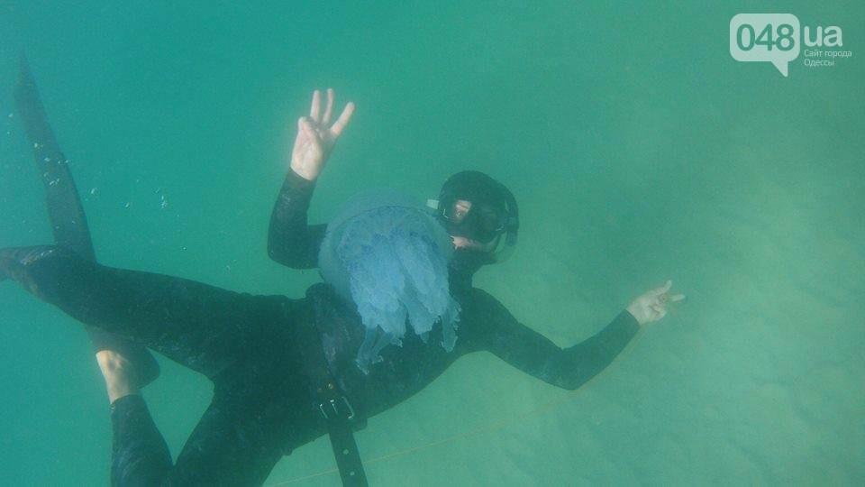 Одесситы устроили фотосессию с гигантской медузой (ФОТО), фото-3