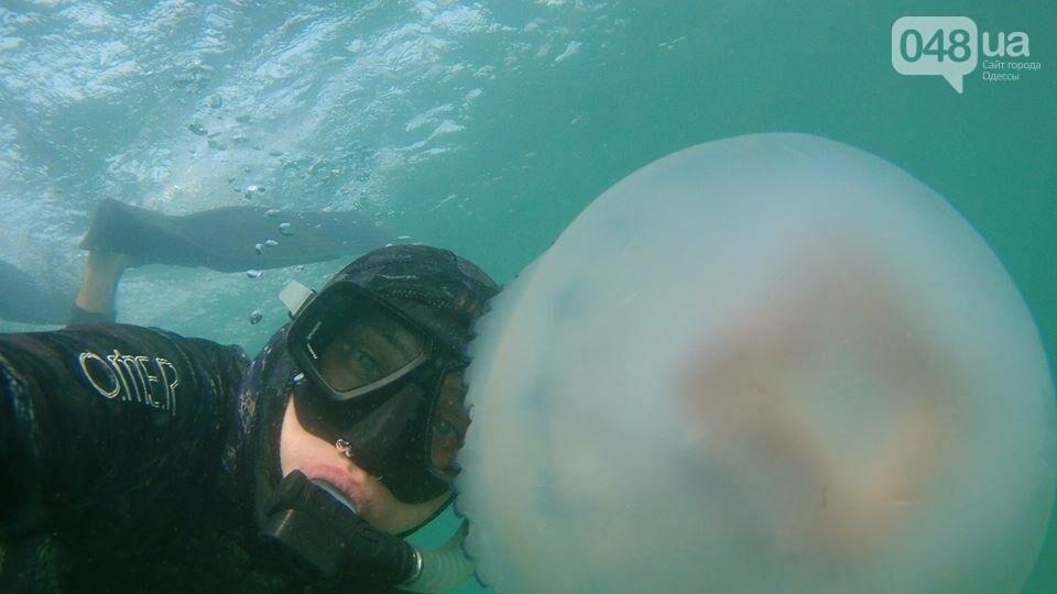 Одесситы устроили фотосессию с гигантской медузой (ФОТО), фото-1