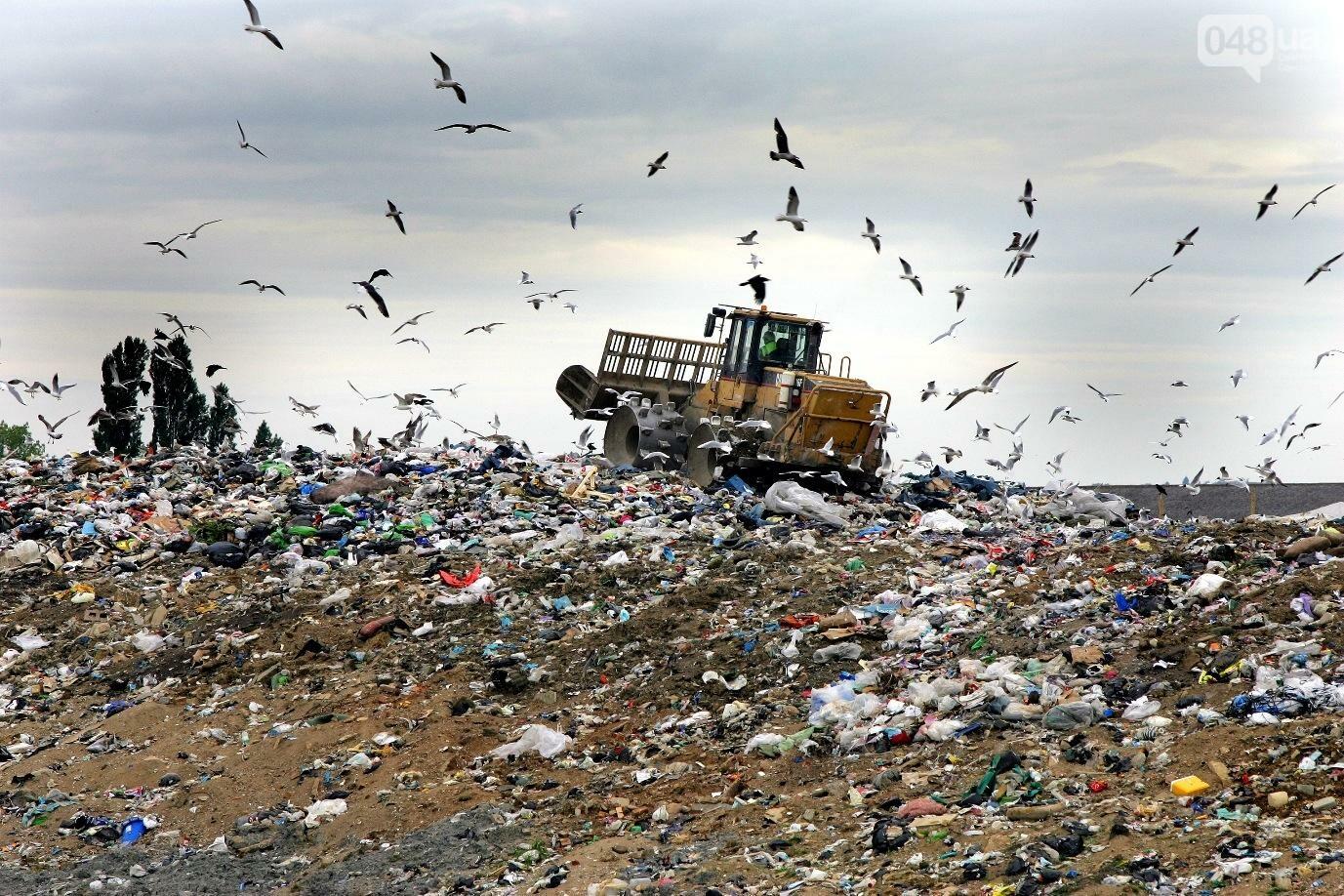 Сортировка мусора в Одессе уменьшит объем отправляемых на свалку отходов на 60-80% — эколог , фото-1