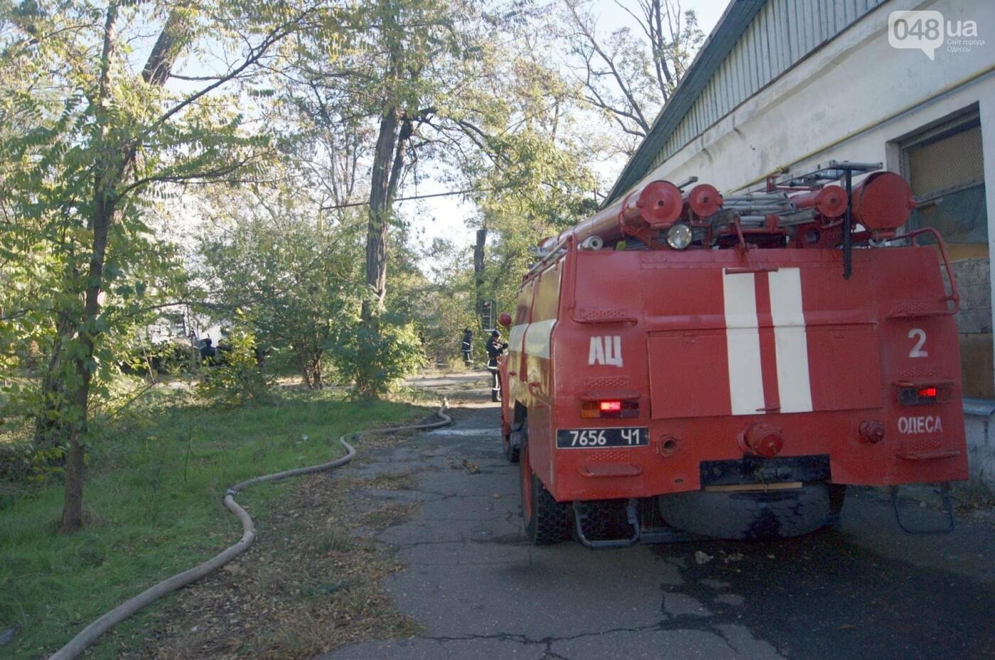 Одесский санаторий продолжает гореть до сих пор (ФОТО, ВИДЕО), фото-11
