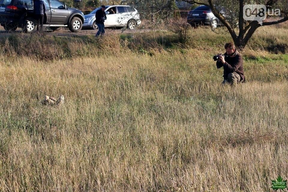 """На рейдах против браконьеров в Одесской области экологов """"страхуют"""" общественники (ФОТО), фото-2"""