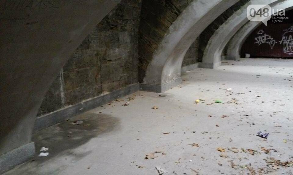 Одессит сфотографировал, как рушится Потемкинская лестница после дождя (ФОТО), фото-3