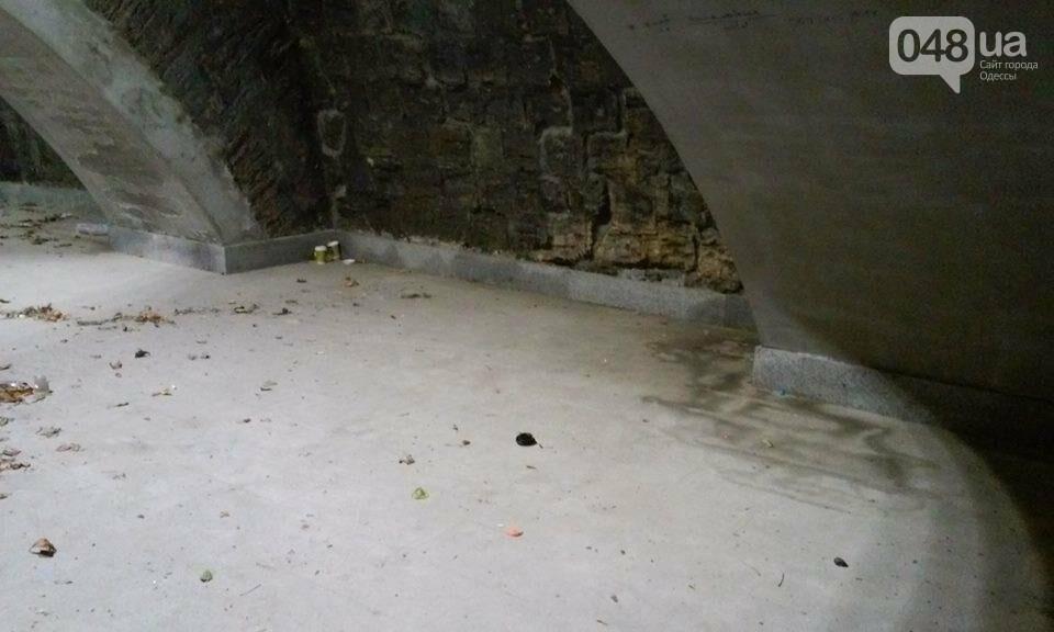 Одессит сфотографировал, как рушится Потемкинская лестница после дождя (ФОТО), фото-2