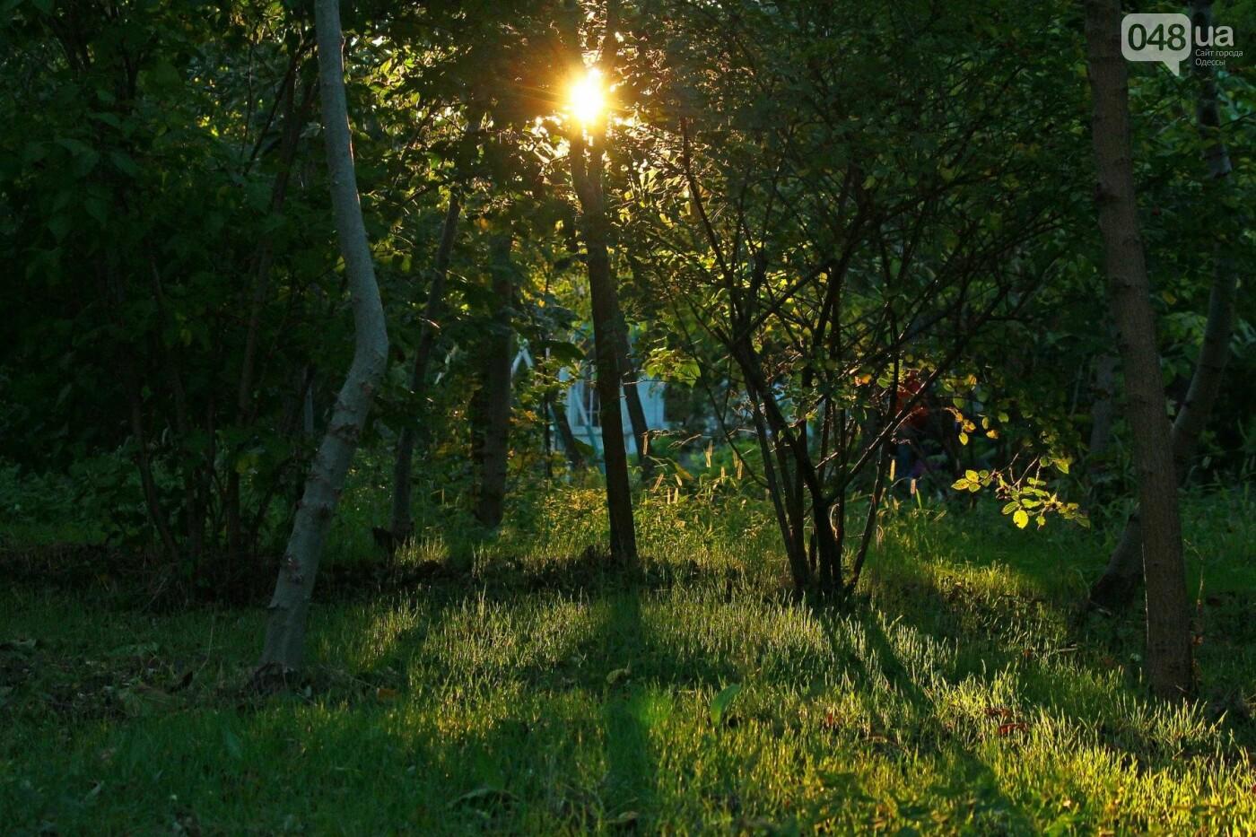 Одесса, которую мы теряем: санаторий им. Чкалова (ФОТОРЕПОРТАЖ), фото-20
