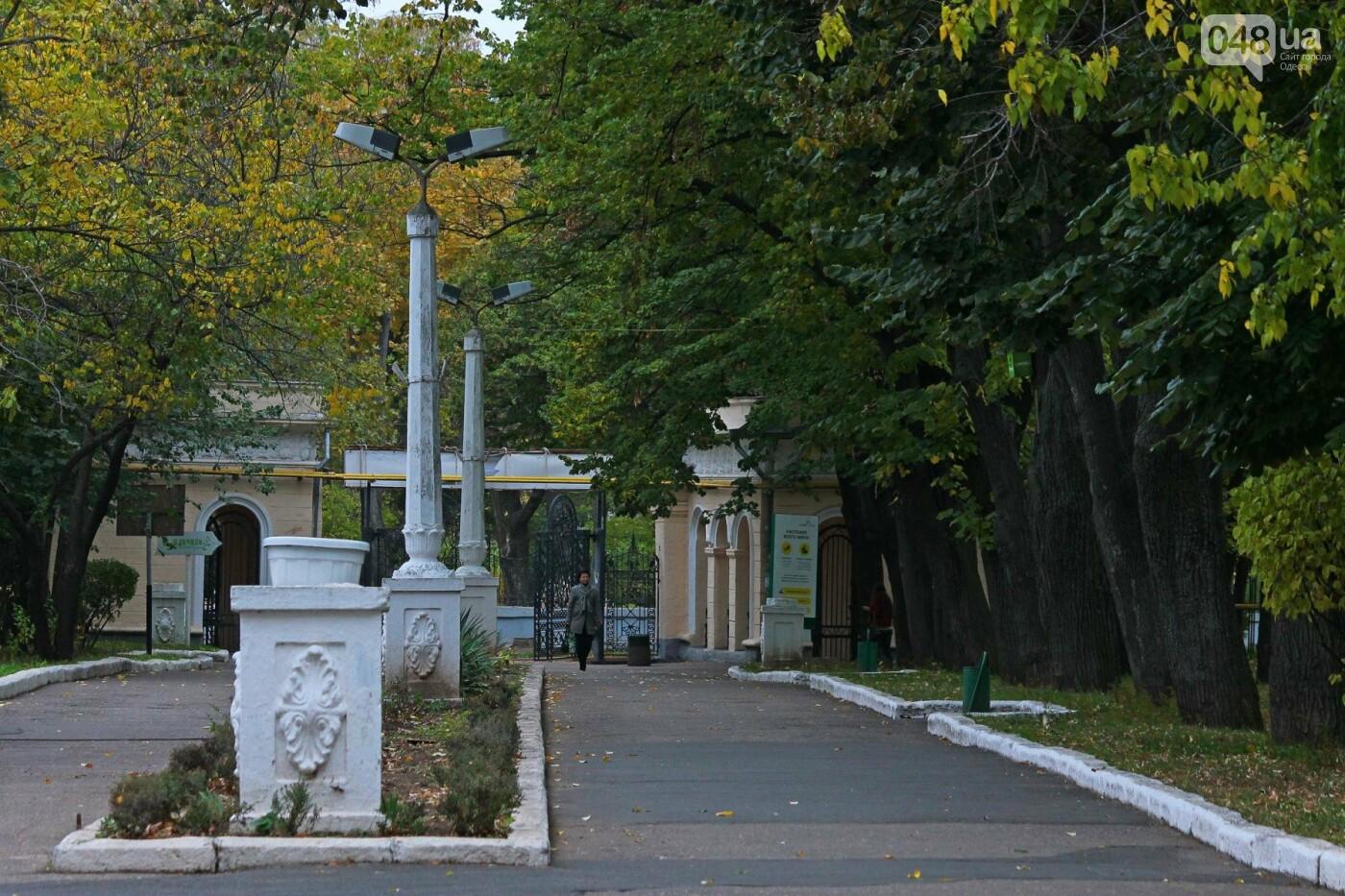 Одесса, которую мы теряем: санаторий им. Чкалова (ФОТОРЕПОРТАЖ), фото-17