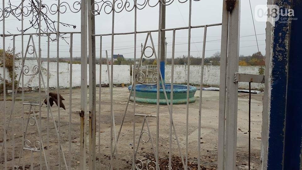 Под Одессой на содержание сарая выделили сумасшедшие деньги (ФОТО), фото-4