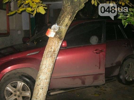 Под Одессой бандиты сожгли машину под носом у хозяина (ФОТО), фото-2