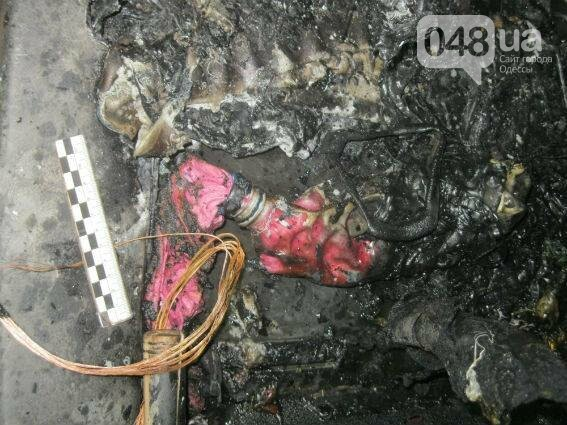 Под Одессой бандиты сожгли машину под носом у хозяина (ФОТО), фото-3