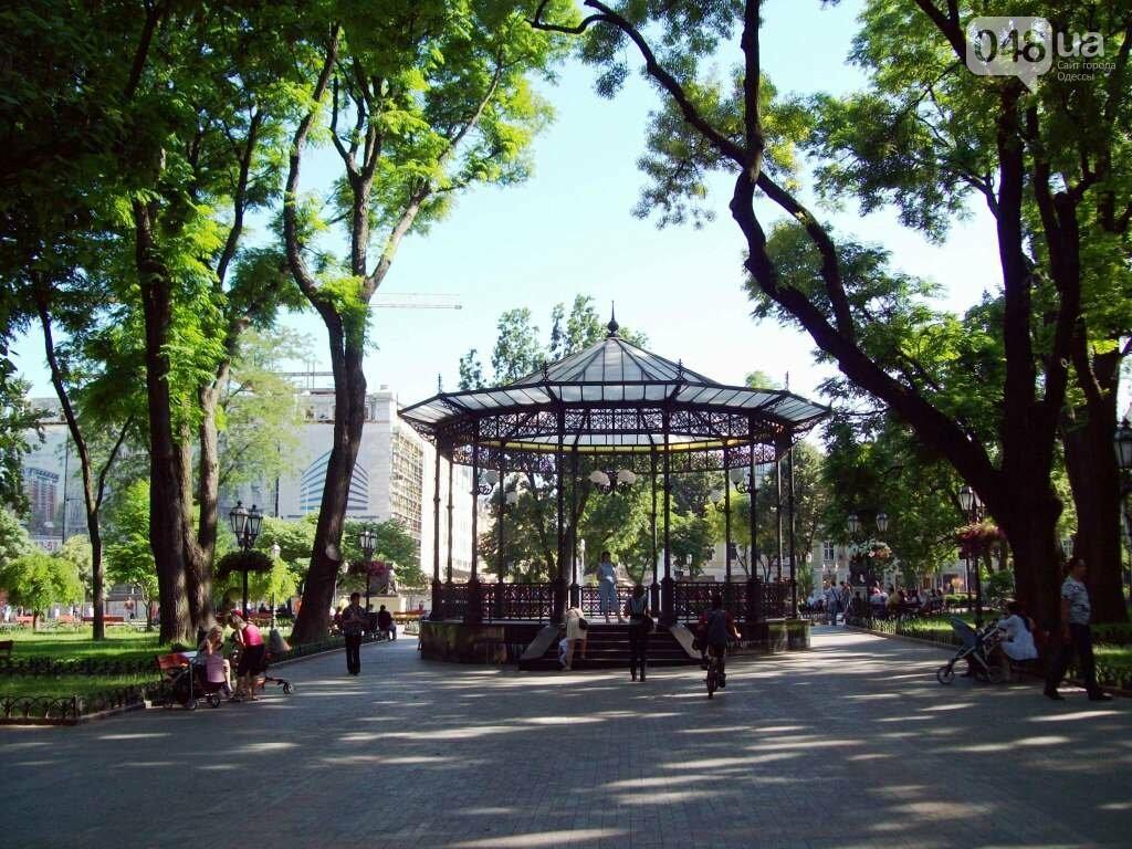 В одесской мэрии подтвердили, что в горсаду спилят 109 деревьев (ДОКУМЕНТЫ), фото-4