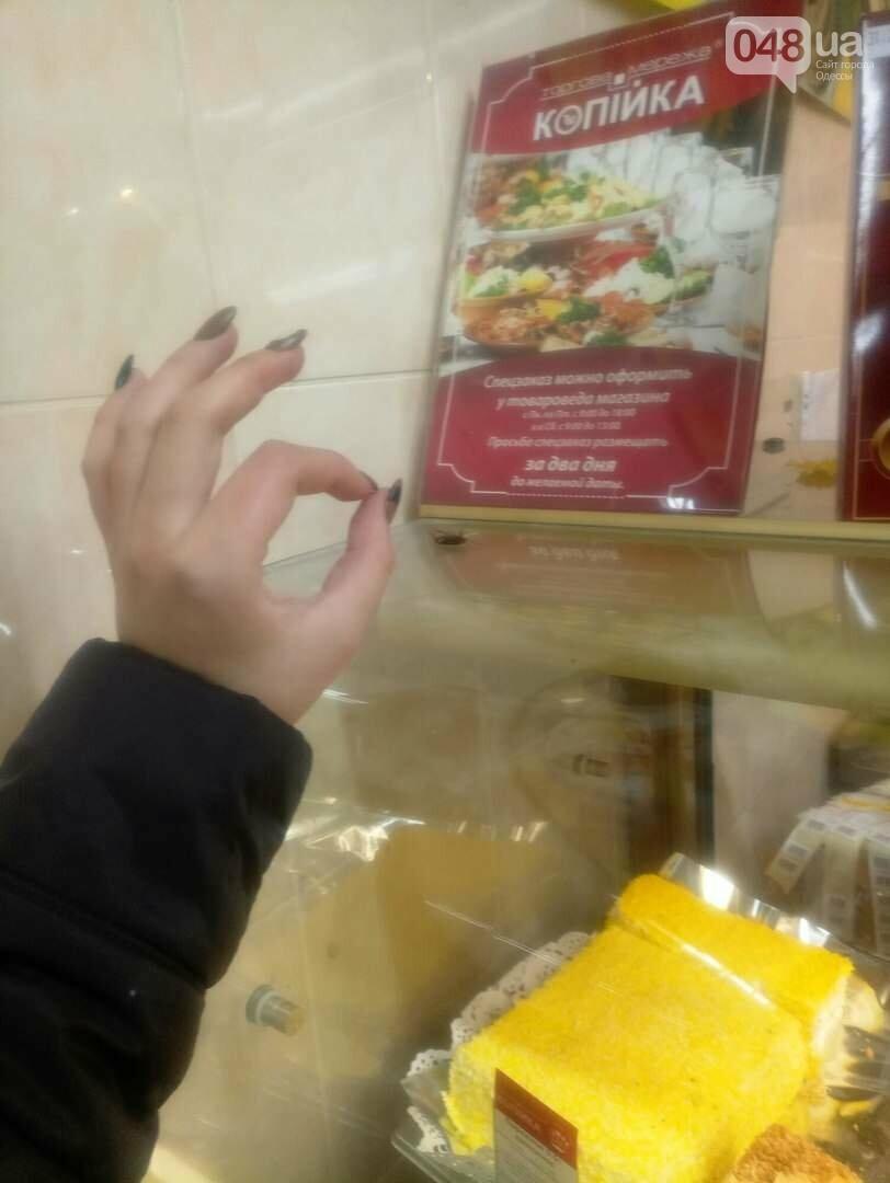 В витрине одесского супермаркета погибает таракан (ФОТО), фото-1