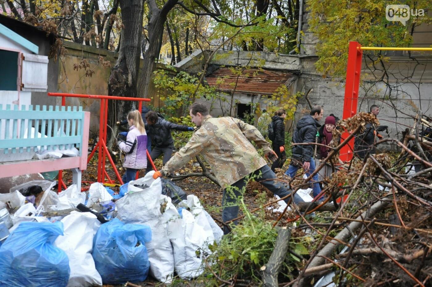 Активисты навели порядок в одесском Летнем театре (ФОТО), фото-18