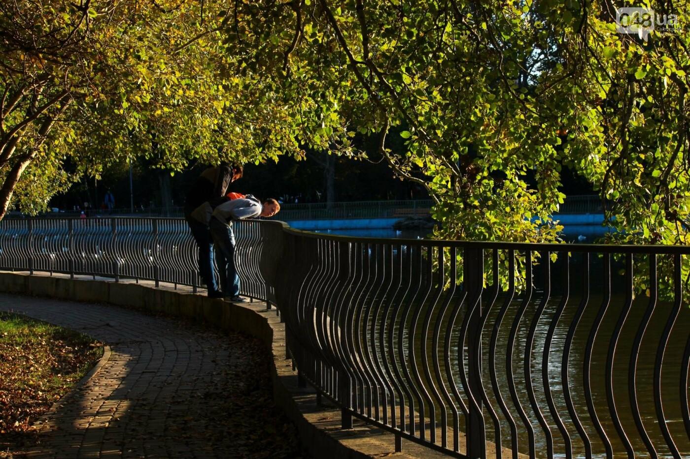 Мистика дендропарка Победы: как одесситам погадать на скульптурах (ФОТОРЕПОРТАЖ) , фото-5