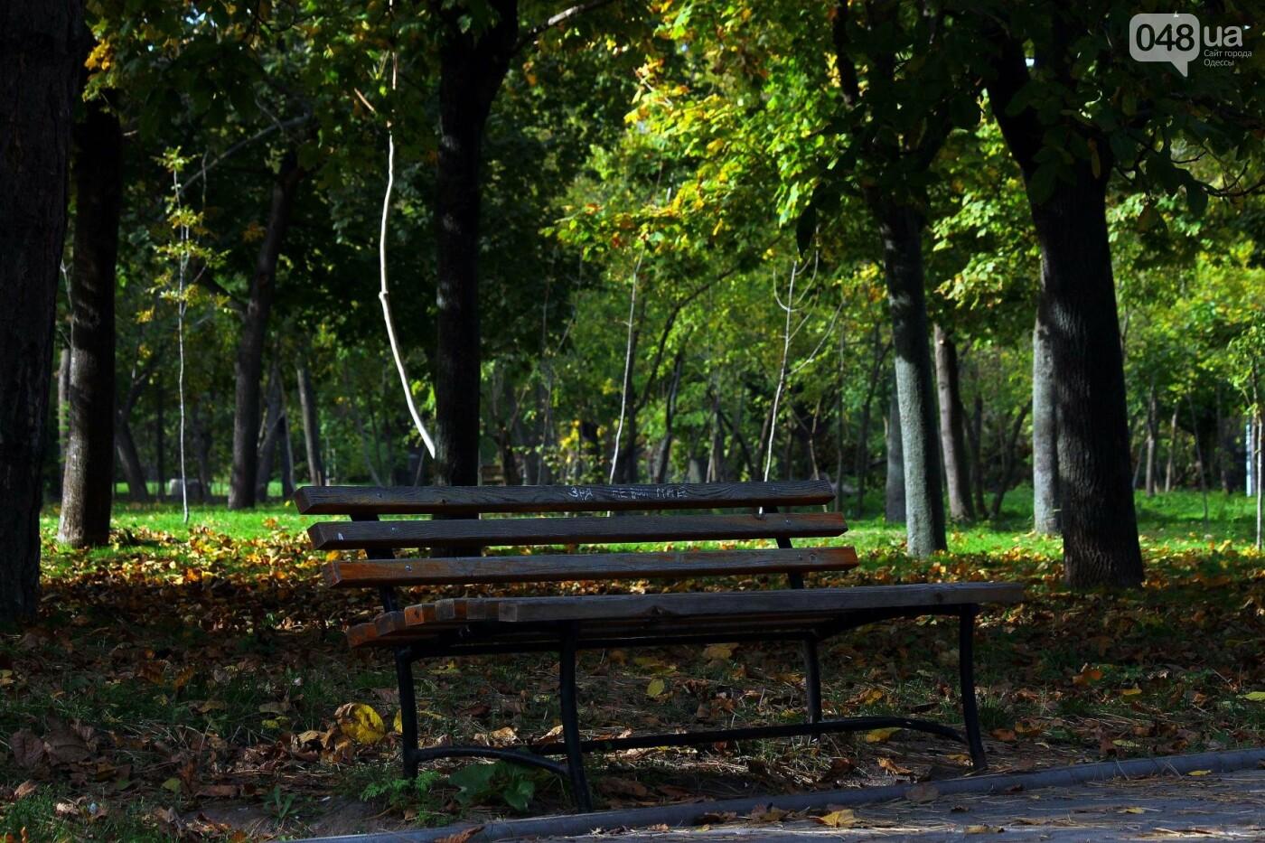 Мистика дендропарка Победы: как одесситам погадать на скульптурах (ФОТОРЕПОРТАЖ) , фото-9