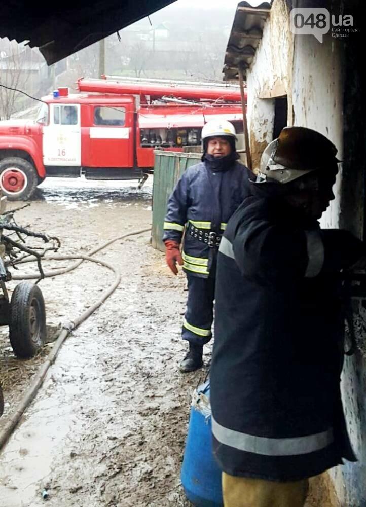 В страшной трагедии под Одессой погибла 4-летняя девочка и 2-летний мальчик (ФОТО), фото-4