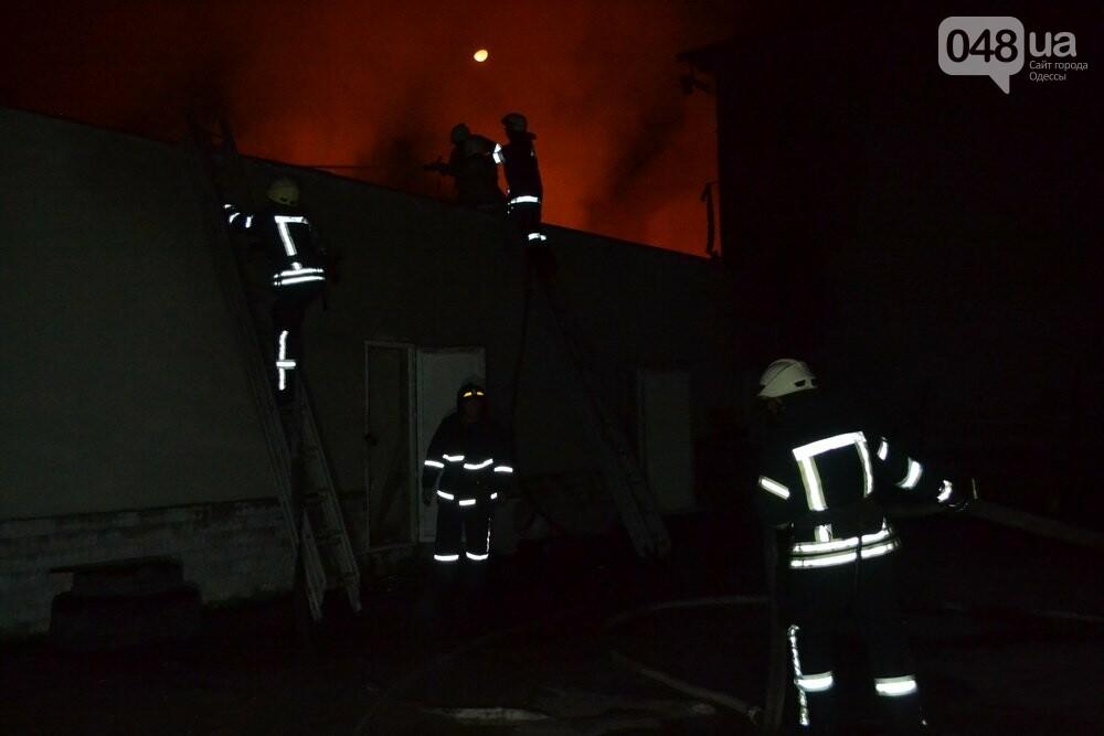 Ядовитый пожар: В Одессе горели два километра бытовой химии (ФОТО), фото-4