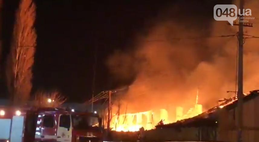 Сильный пожар в эти минуты разгорелся около одесской заправки (ФОТО, ВИДЕО), фото-1