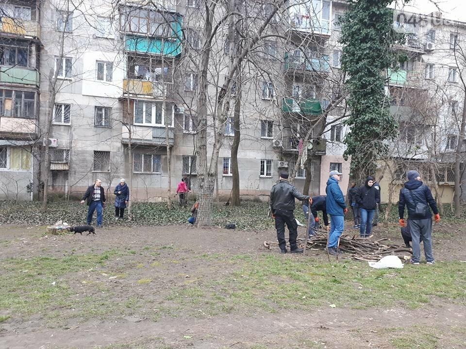 Активисты нашли интересный способ защитить одесские деревья от незаконной вырубки (ФОТО), фото-6