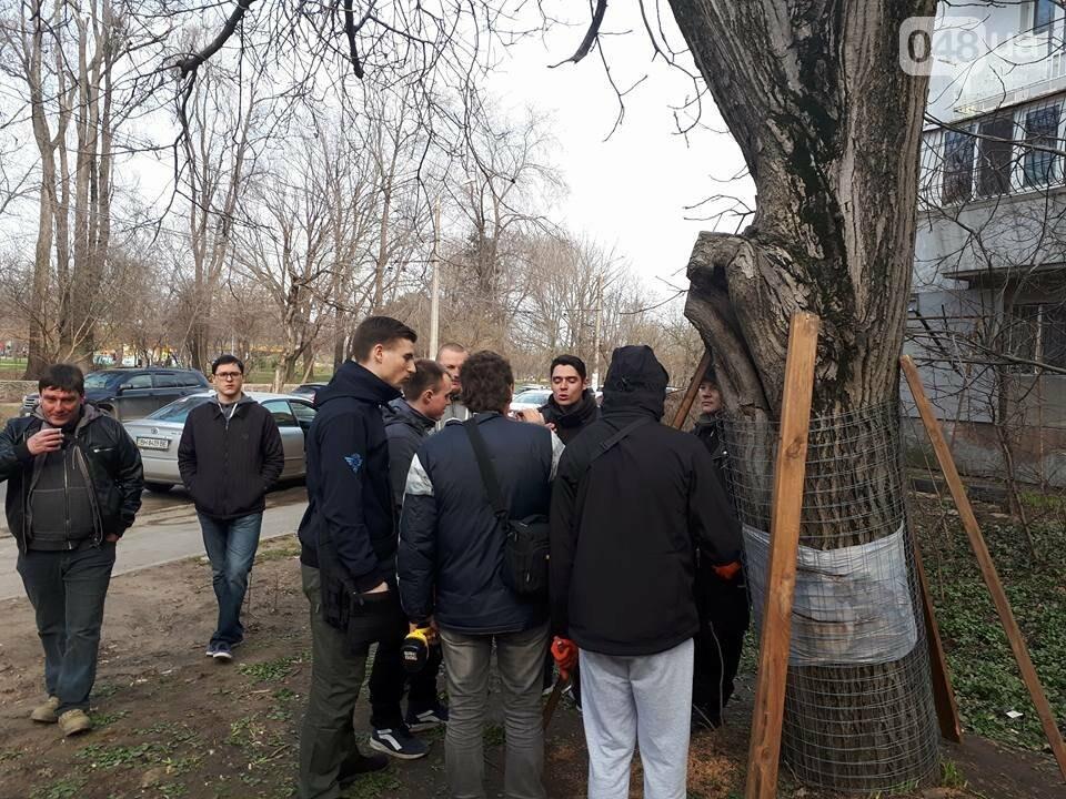 Активисты нашли интересный способ защитить одесские деревья от незаконной вырубки (ФОТО), фото-5