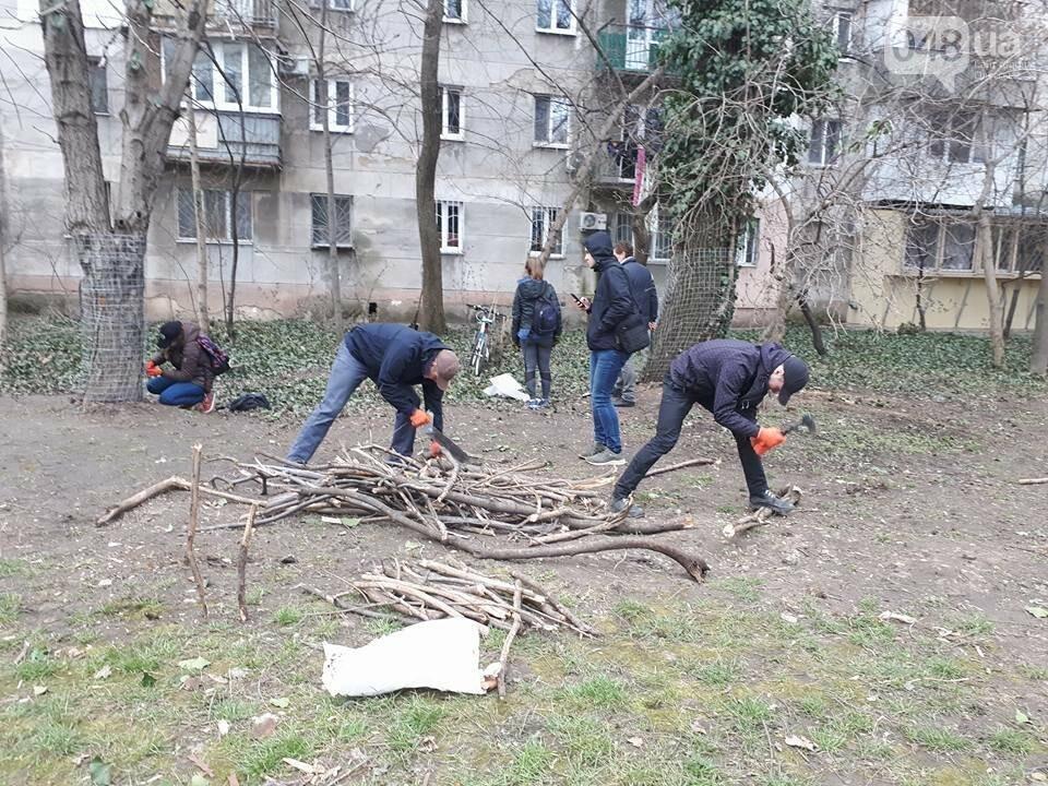 Активисты нашли интересный способ защитить одесские деревья от незаконной вырубки (ФОТО), фото-7