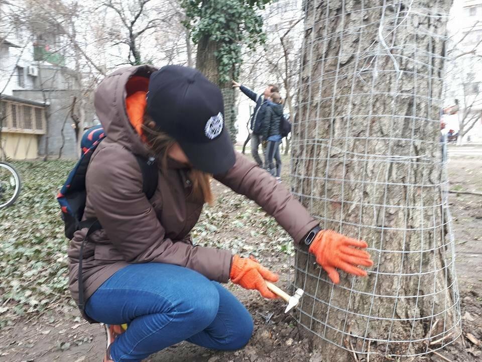 Активисты нашли интересный способ защитить одесские деревья от незаконной вырубки (ФОТО), фото-10