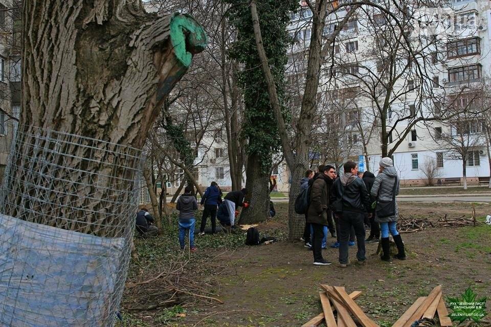 Активисты нашли интересный способ защитить одесские деревья от незаконной вырубки (ФОТО), фото-11