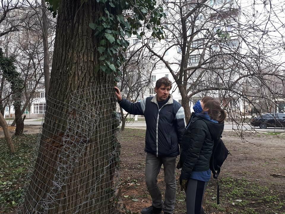 Активисты нашли интересный способ защитить одесские деревья от незаконной вырубки (ФОТО), фото-12