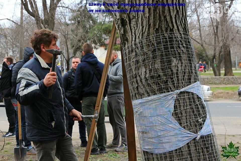 Активисты нашли интересный способ защитить одесские деревья от незаконной вырубки (ФОТО), фото-4