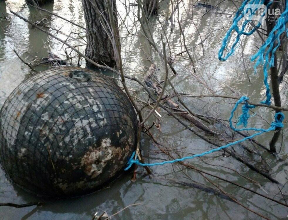 «Рогатая смерть»: 400 килограммовые мины времен Первой мировой перепугали жителей Одесской области (ФОТО), фото-7