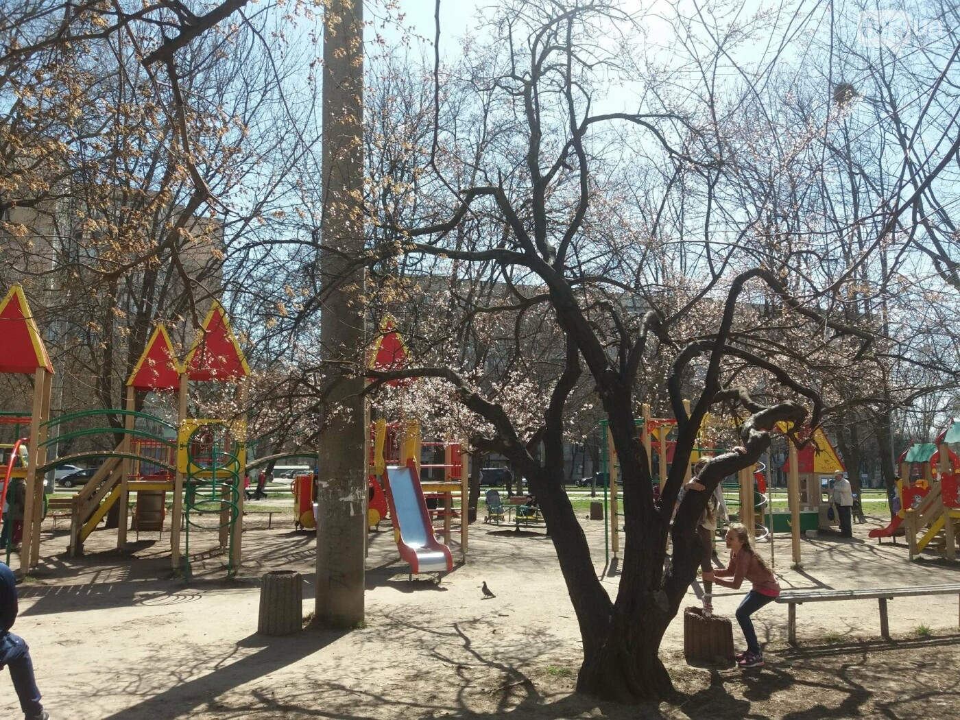 На Одессу обрушилась весна (ФОТОФАКТ), фото-9