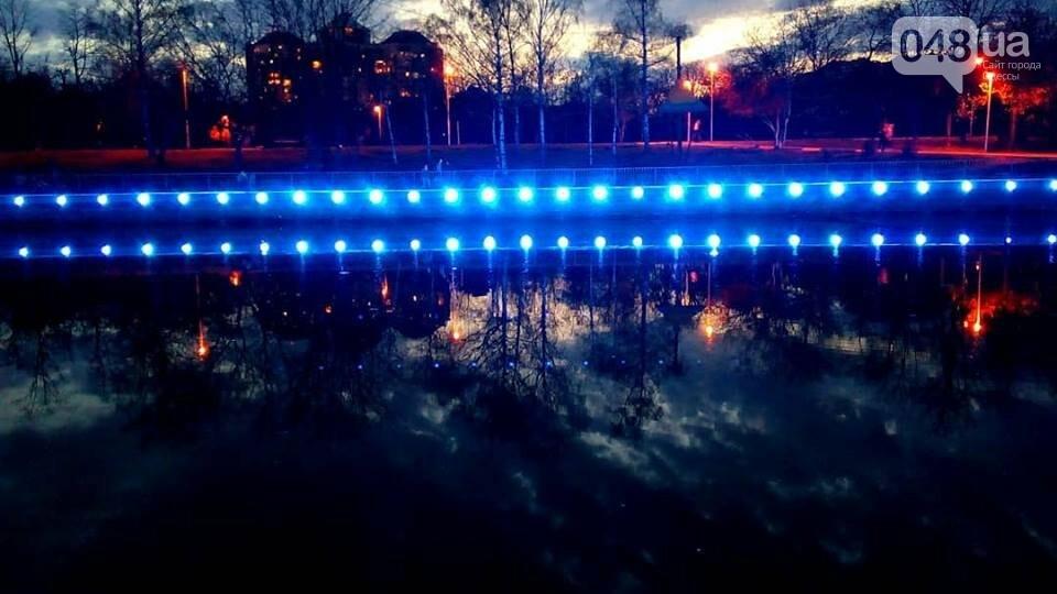 В Одессе появился живой флаг из цветов (ФОТО), фото-2