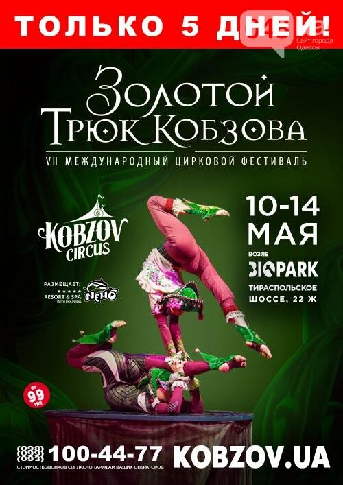 Кобзов в Одессе изменит локацию: фестиваль проведут в новом биопарке (ФОТО), фото-1