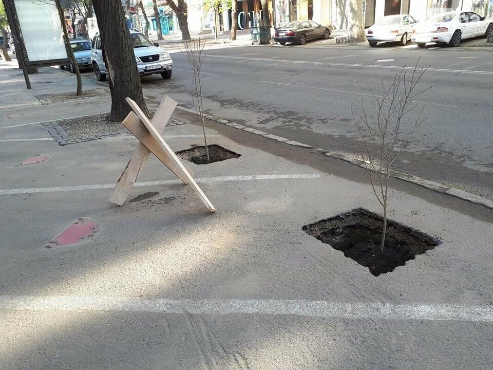Неизвестные экоактивисты в центре Одессы разбили асфальт и посадили деревья (ФОТО), фото-4
