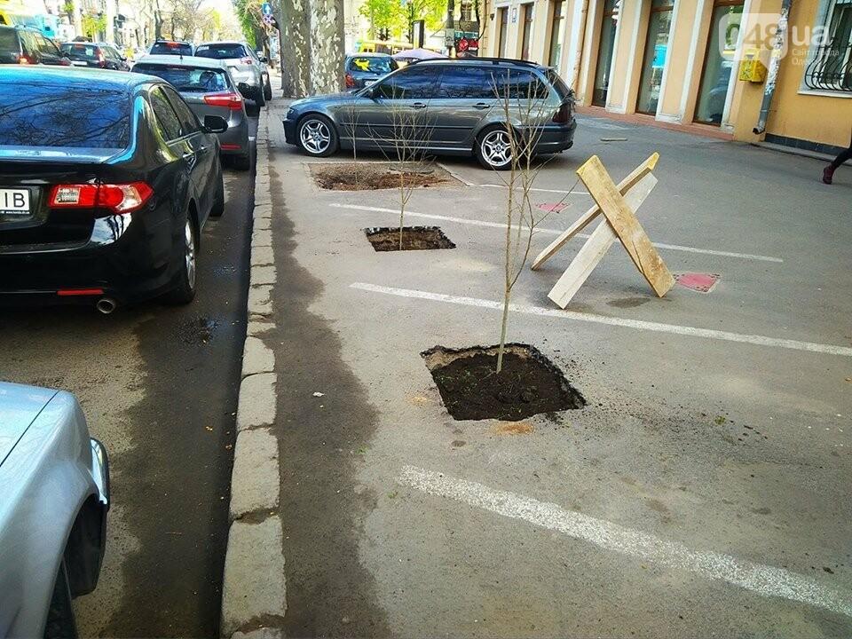 Неизвестные экоактивисты в центре Одессы разбили асфальт и посадили деревья (ФОТО), фото-5