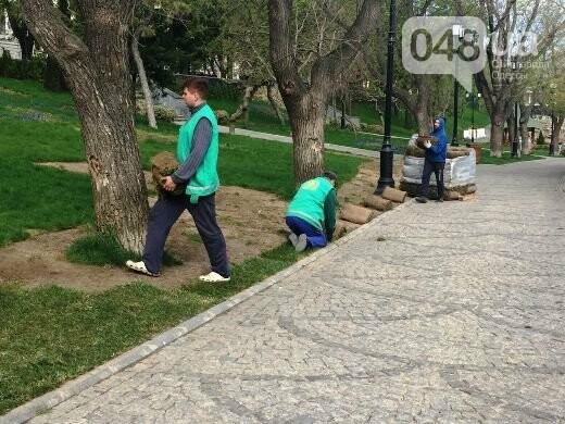 В Стамбульском парке Одессы уложили новый газон (ФОТО), фото-1