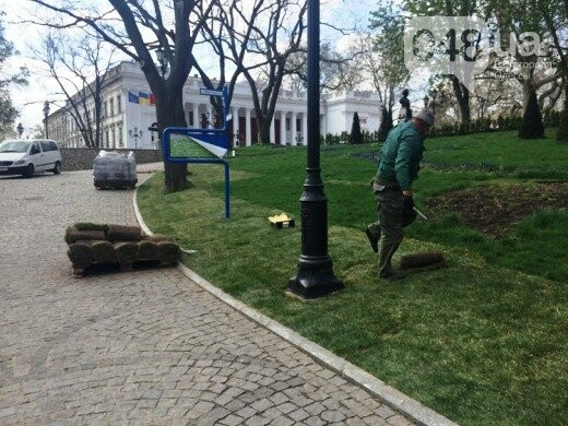 В Стамбульском парке Одессы уложили новый газон (ФОТО), фото-2