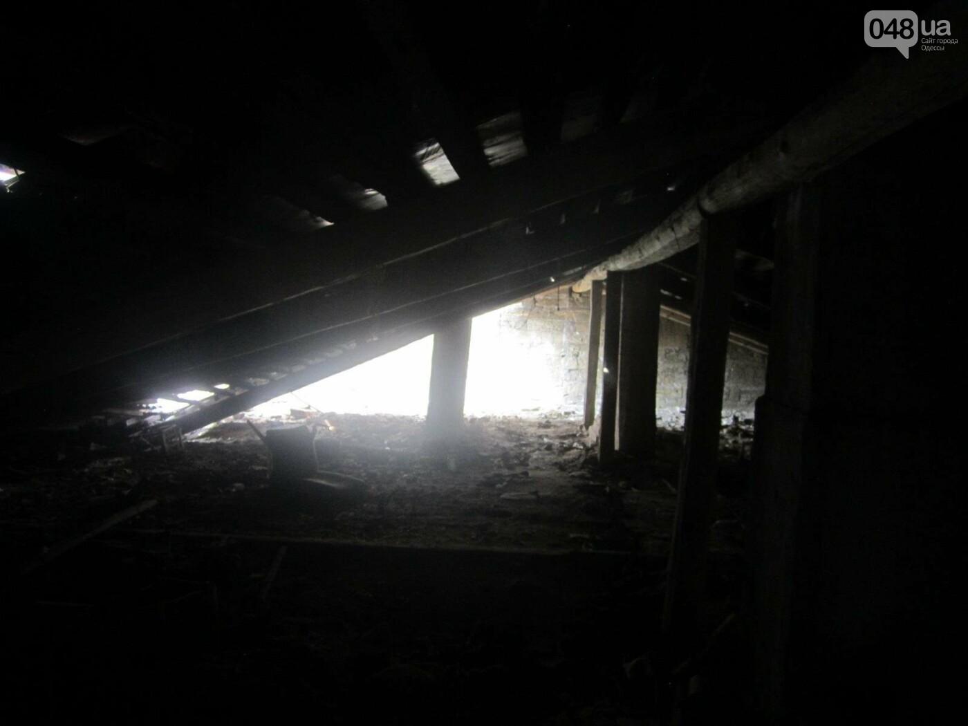 Отчаянные одесситы забрались на крышу дома Гоголя и показали настоящий треш (ФОТО), фото-3