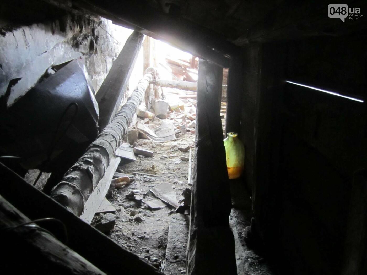 Отчаянные одесситы забрались на крышу дома Гоголя и показали настоящий треш (ФОТО), фото-12
