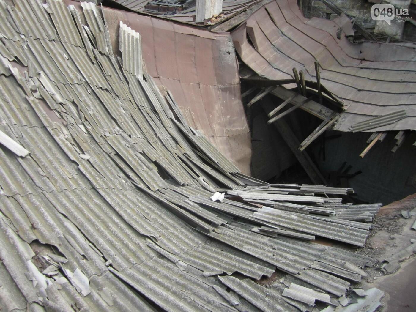 Отчаянные одесситы забрались на крышу дома Гоголя и показали настоящий треш (ФОТО), фото-16