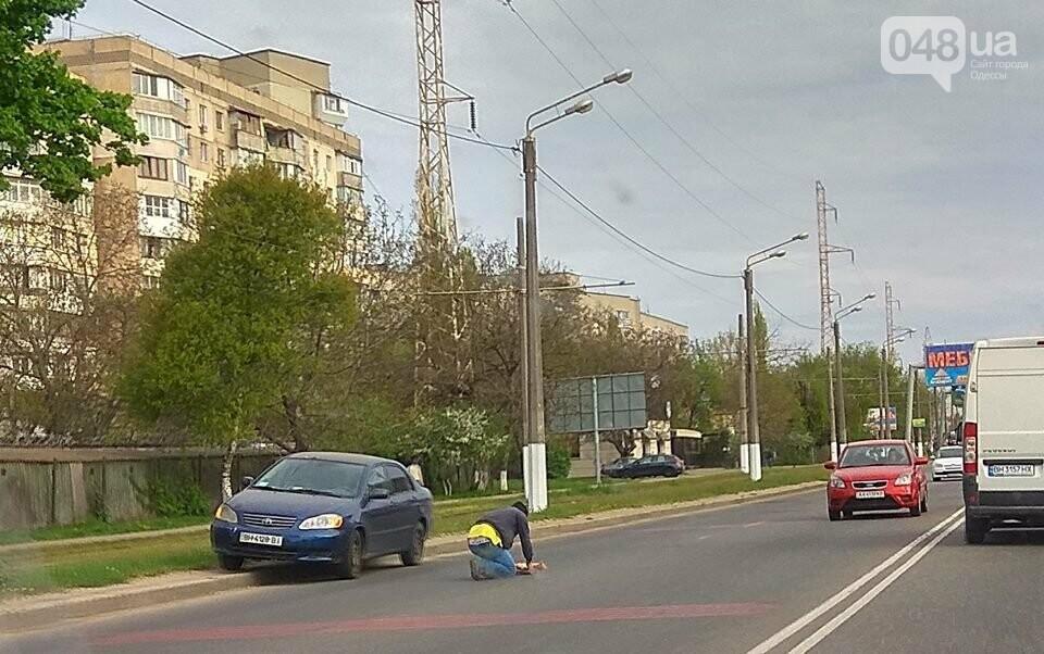 Одесский водитель в потоке машин спасал кошку (ФОТО), фото-1