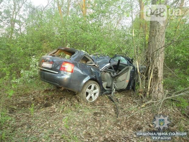 В Одесской области водитель Audi убил пассажира (ФОТО), фото-1
