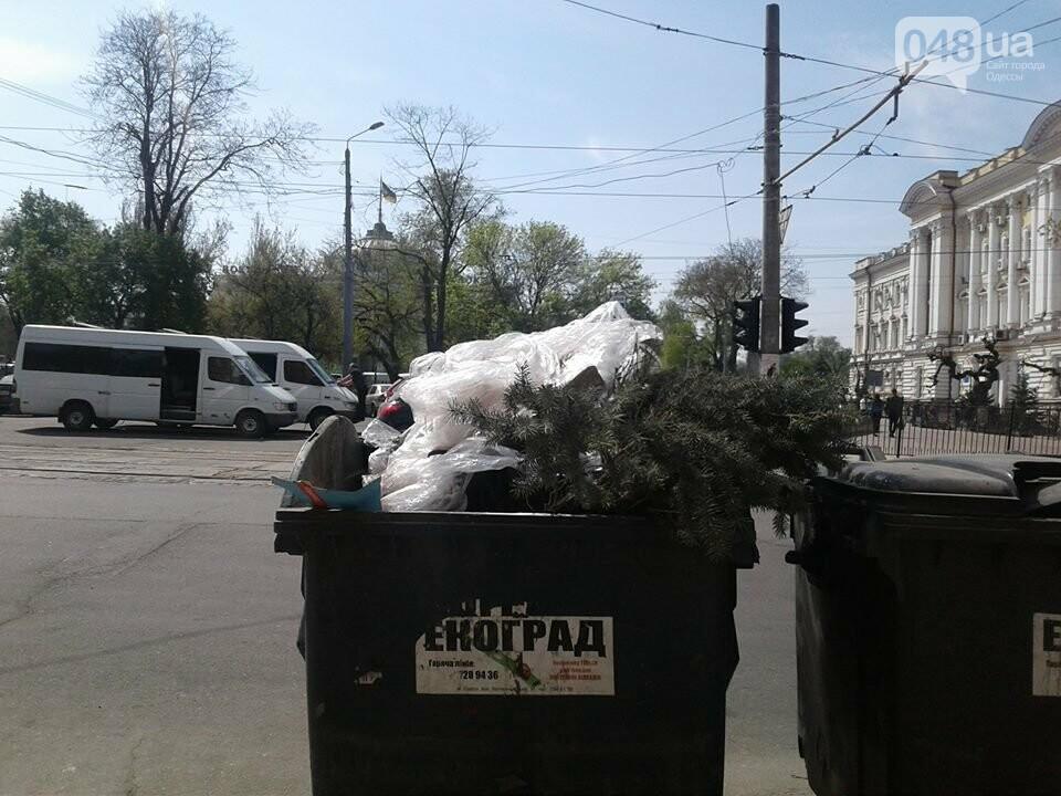 Слабак: в Одессе накануне майских вынесли елку на мусорку (ФОТО), фото-1