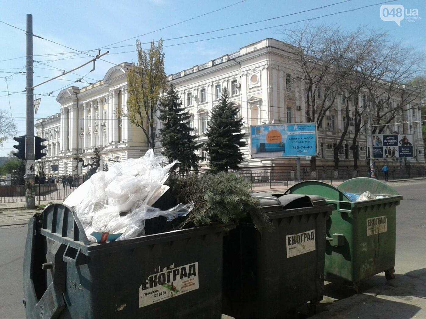 Слабак: в Одессе накануне майских вынесли елку на мусорку (ФОТО), фото-2