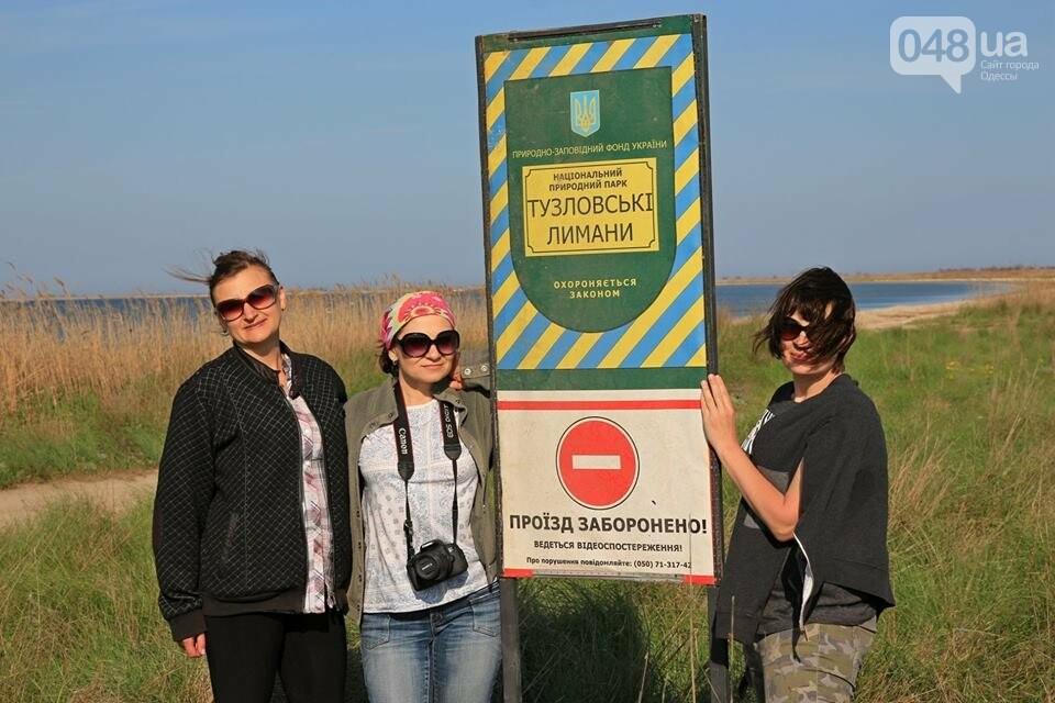 Одесский эколог опубликовал волшебные фото из заповедника: красота просто невероятная (ФОТО) , фото-14