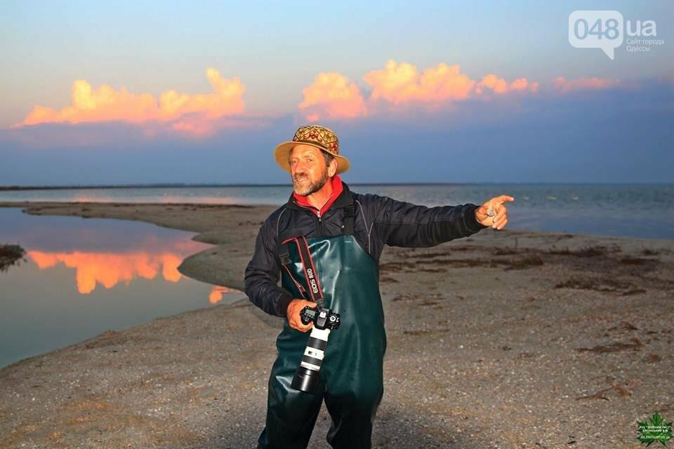 Одесский эколог опубликовал волшебные фото из заповедника: красота просто невероятная (ФОТО) , фото-6