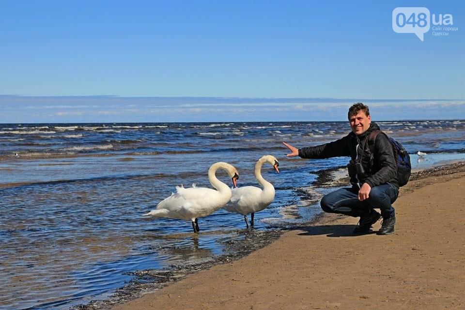 Одесский эколог опубликовал волшебные фото из заповедника: красота просто невероятная (ФОТО) , фото-43
