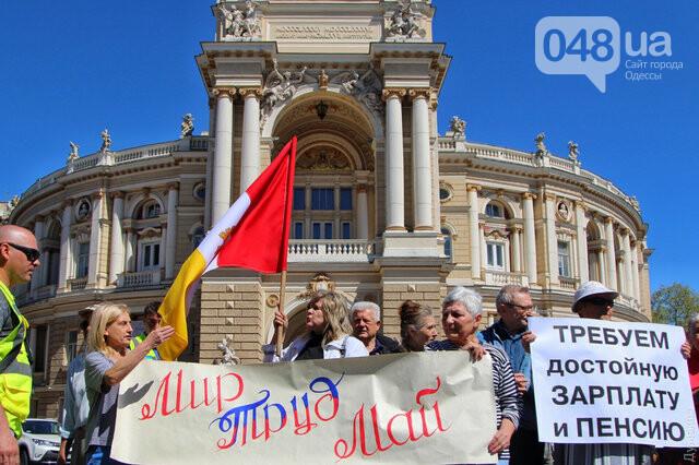 Агрессивная сторонница «русского мира» гонялась за полицейскими с древком от флага: старушку поймали, древко отобрали (ФОТО) , фото-2