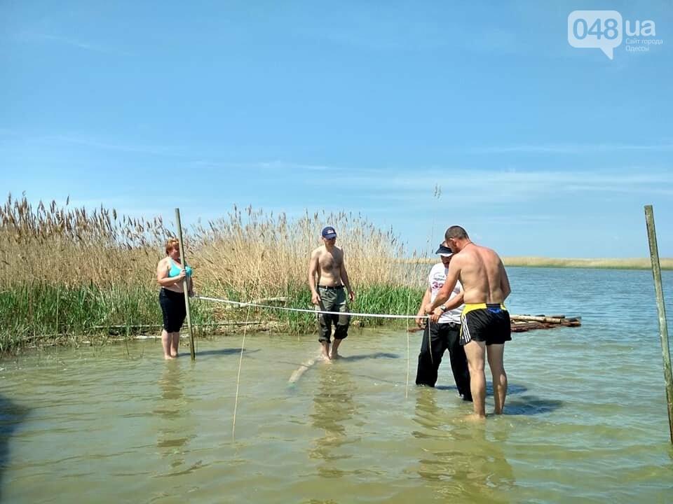 В Одесской области строят остров для пеликанов (ФОТО), фото-3