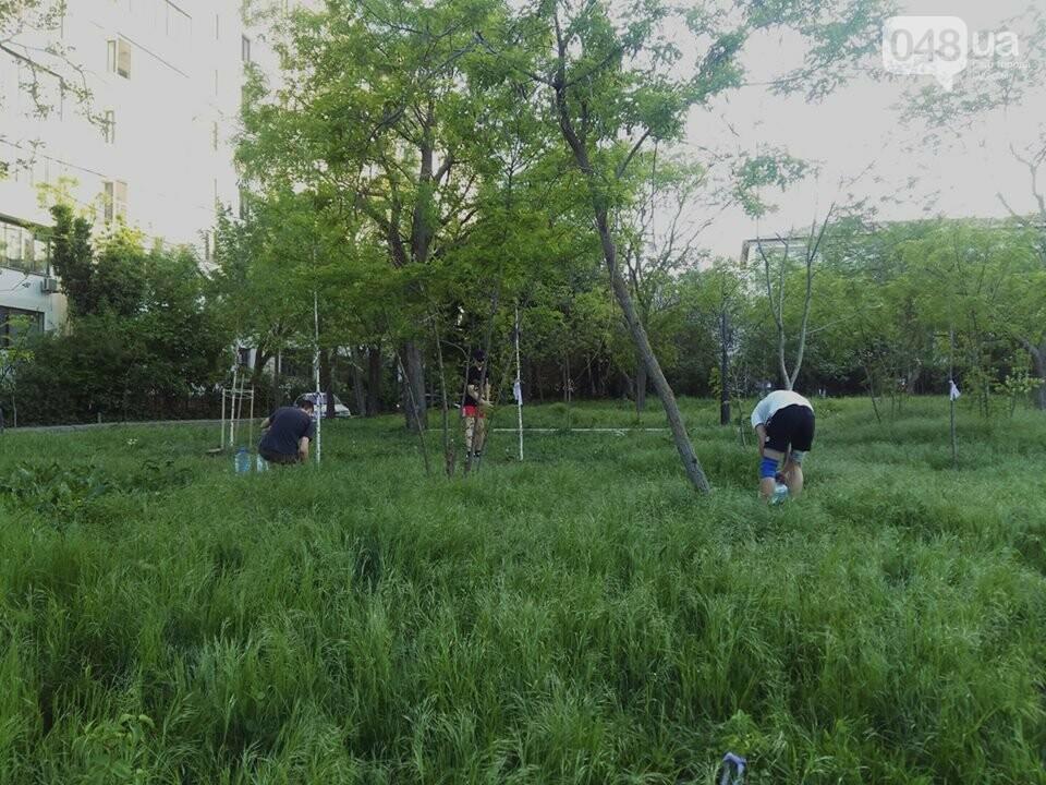 В Одессе патриотичная молодежь поливала деревья и сеяла цветы, - ФОТО , фото-1