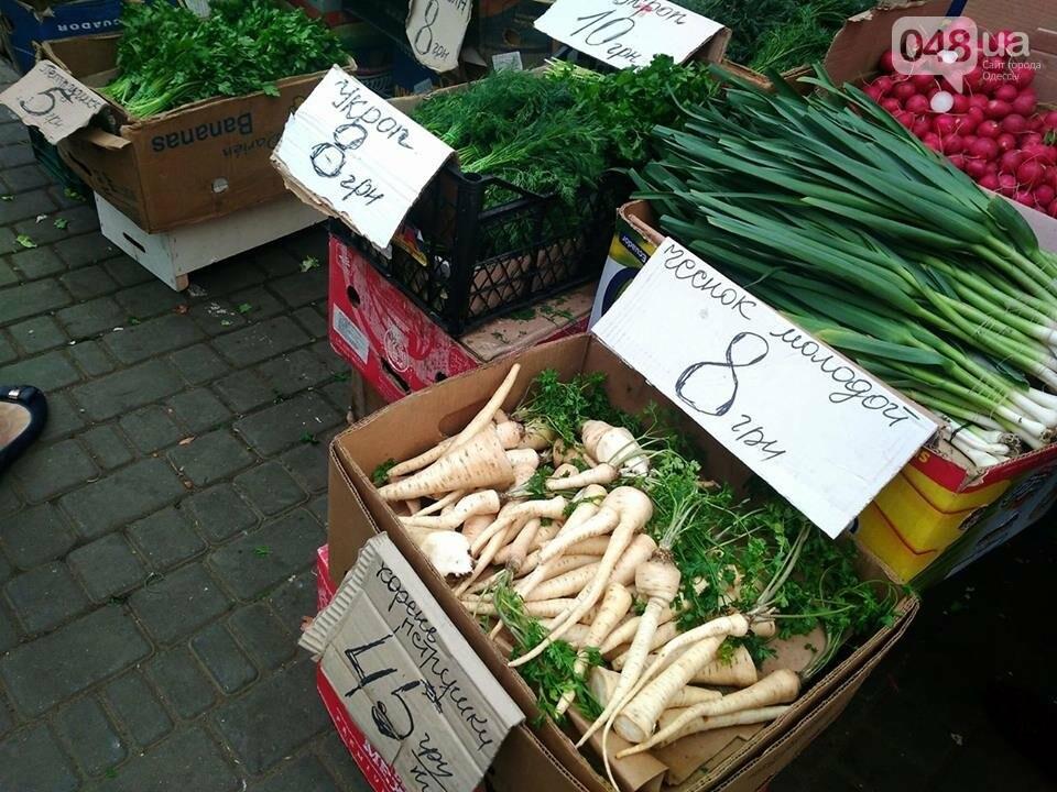 Одесские рынки завалили клубникой и первыми кабачками: обзор цен, - ФОТО, фото-5
